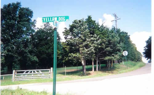 Yellow Dog Road